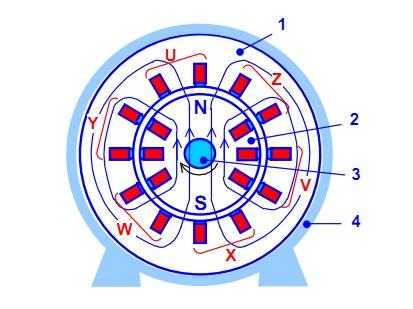 Как из растрового изображения сделать векторное в иллюстраторе 5